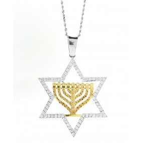 14kt White And Yellow Gold Jewish Star Pendant