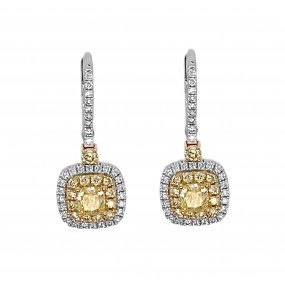 18kt Yellow and White Gold Diamond Earring